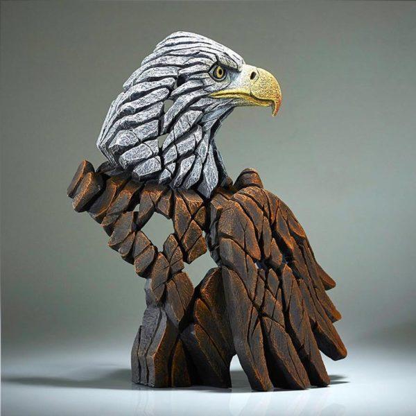 Buste d'aigle, tête blanche. Edge sculpture EDB23B
