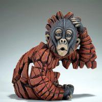 Bébé orang-outan se grattant la tête, par edge sculpture